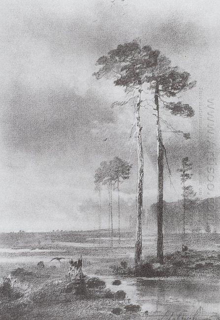 pine in marsh 1882