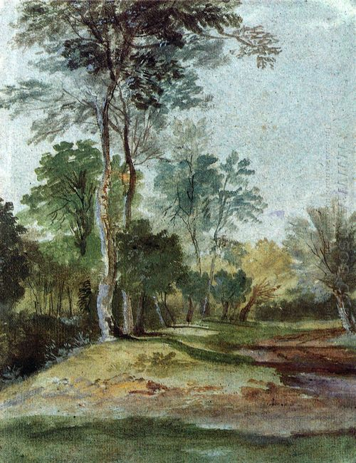 avenue in the country
