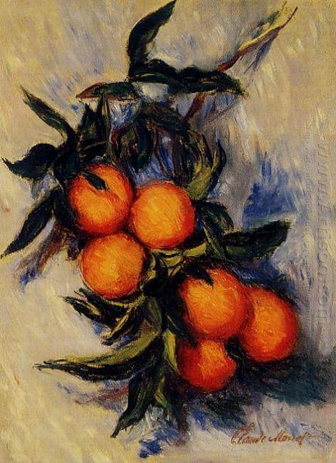 Branch Of Orange Bearing Fruit