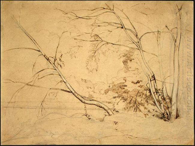 Clump Of Trees At Civita Castellana 1826