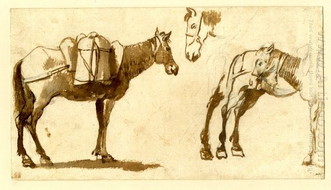 Drawing Of Mules Including One Full Length