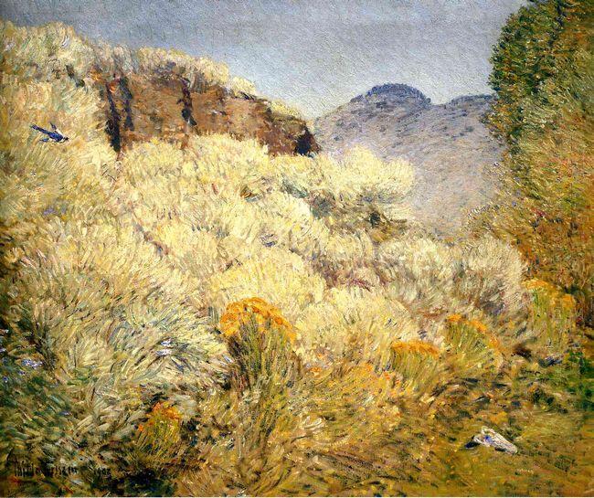 Harney Desert