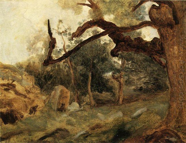L Arbre Tordu Les Chenes Du Mont Usey Fontainebleau