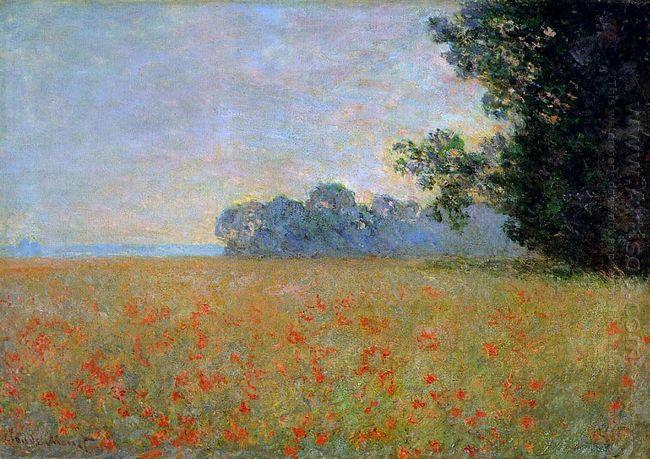 Oat And Poppy Field