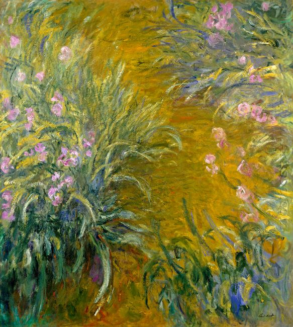 Path Through The Irises 01 1917