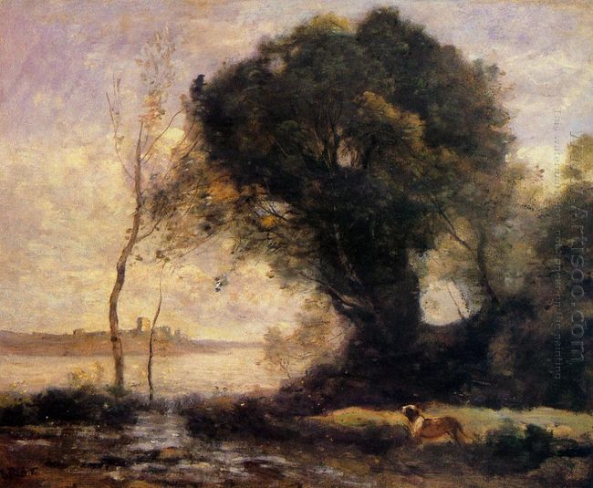 Pond With Dog