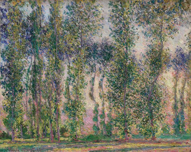 Poplars At Giverny