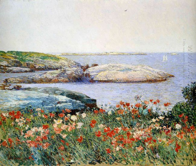 Poppies Isles Of Shoals 1