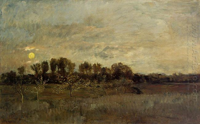 The Orchard At Sunset