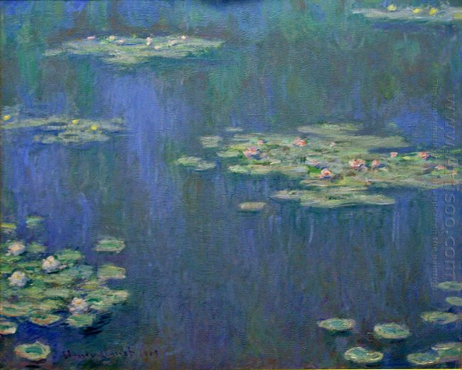 Water Lilies 11