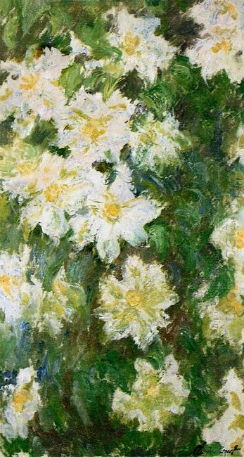 White Clematis 1887