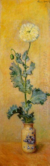 White Poppy 1883