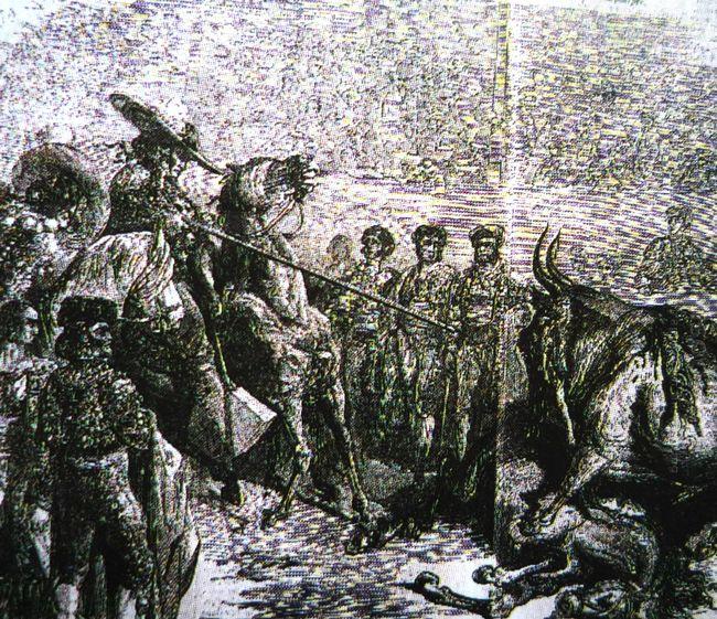 Orrida 1860