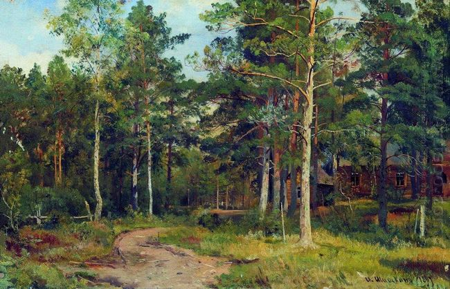 Autumn Landscape Path In The Forest 1894