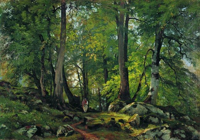 Beech Forest In Switzerland 1863 1
