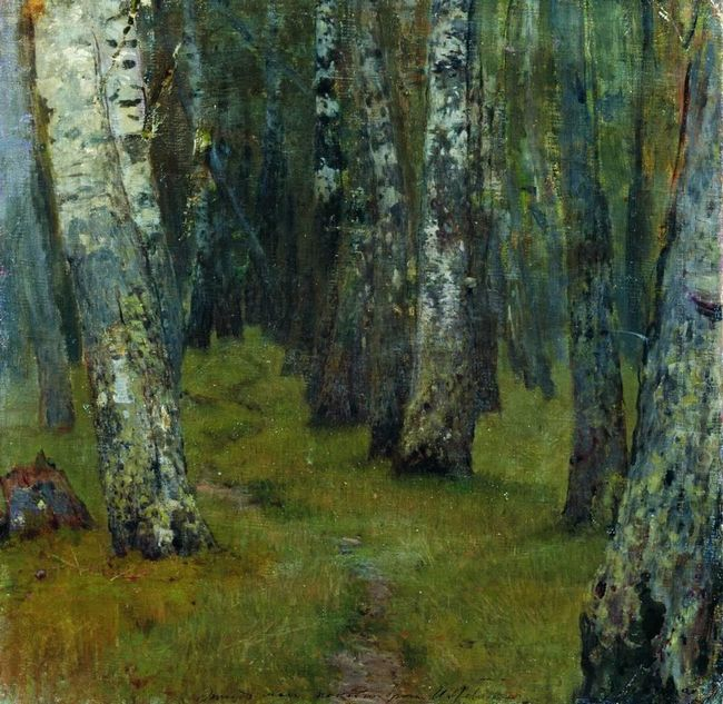 Birches Forest Edge