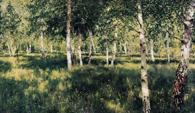 Birch Grove 1889