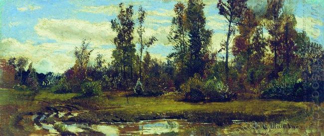 Oil Lake In The Forest