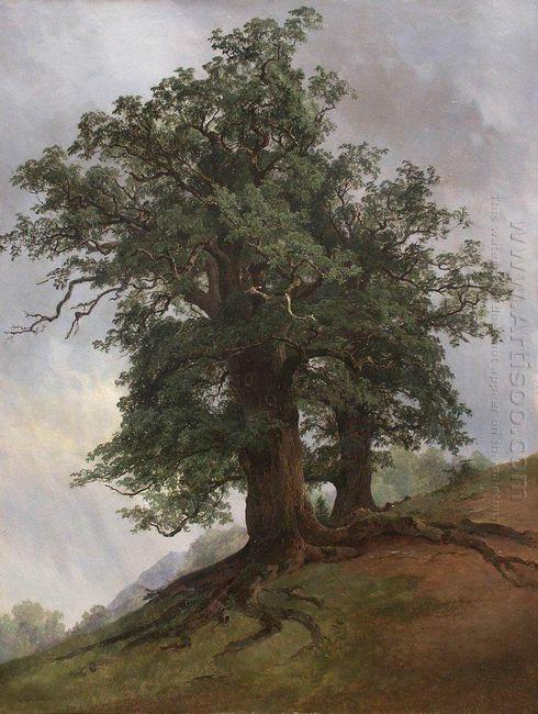 Old Oak 1866