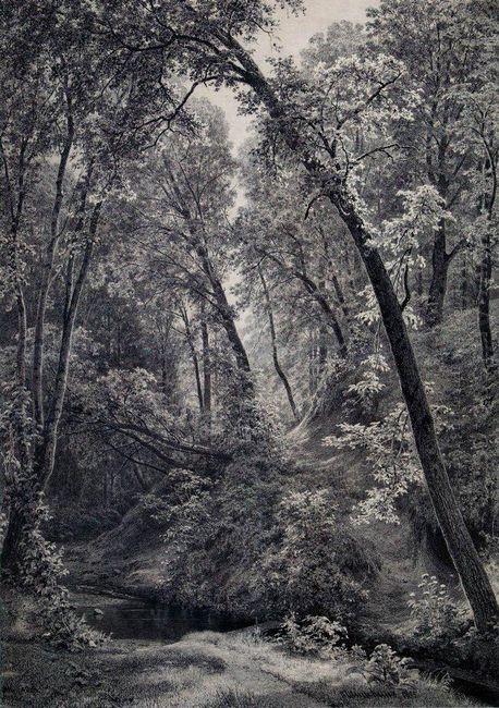 On A Stream 1895