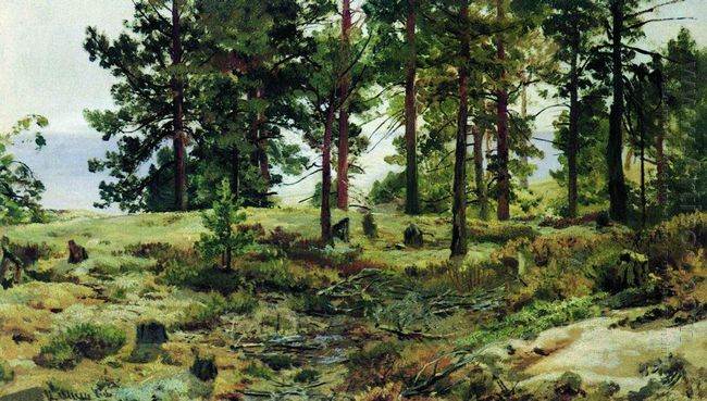 On Sandy Soil Mary Howie On Finnish Railways 1890