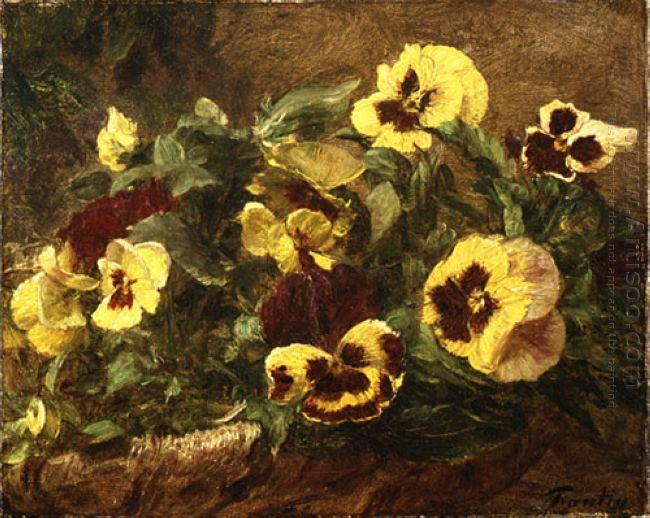 Pansies 1903