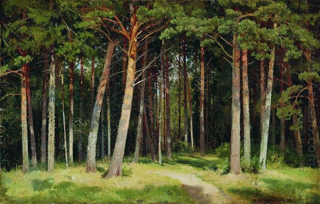 Pine Forest 1885