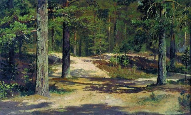 Pine Forest 1889 1