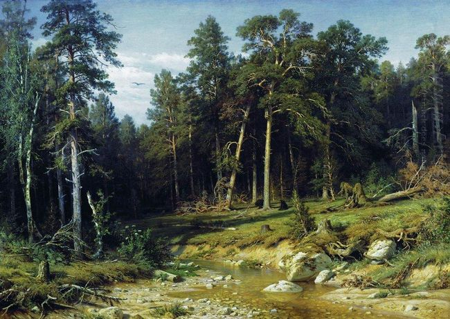 Pine Forest In Vyatka Province 1872