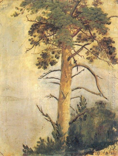 Pine On The Cliff 1855
