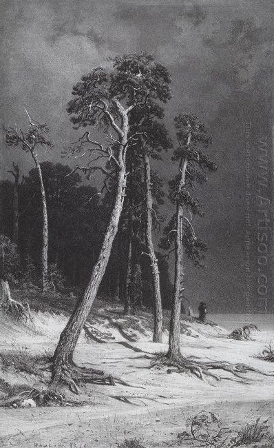 Pines 1892