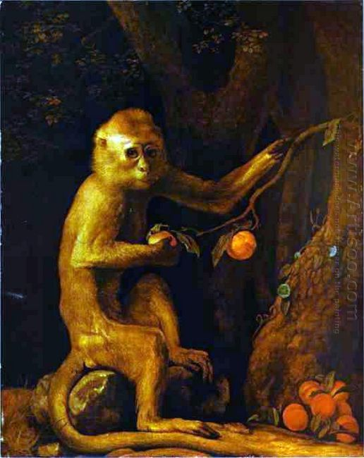 Portrait Of A Monkey 1774