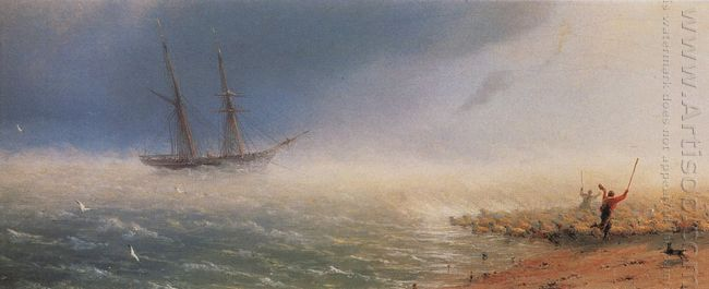 Sheep Which Forced By Storm To The Sea 1855