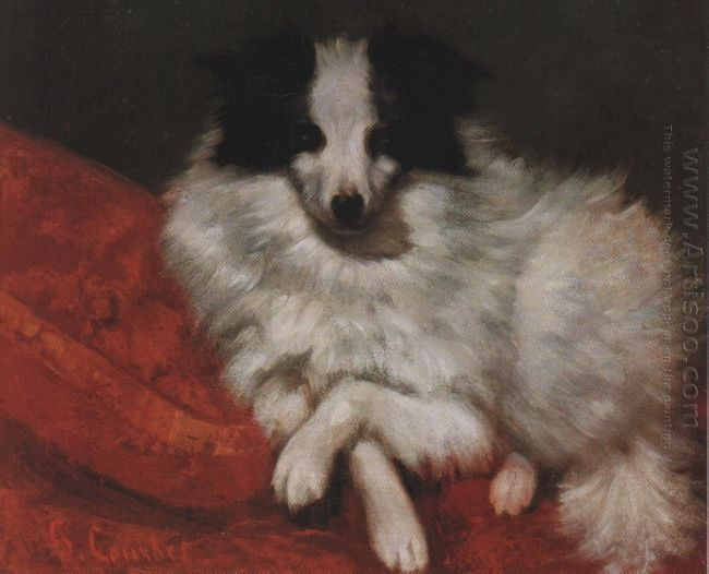 Sitting On Cushions Dog 1855