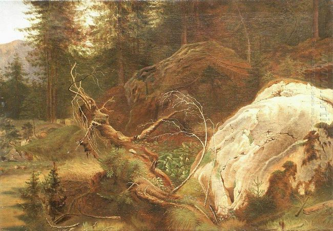 Stones In The A Forest 1865
