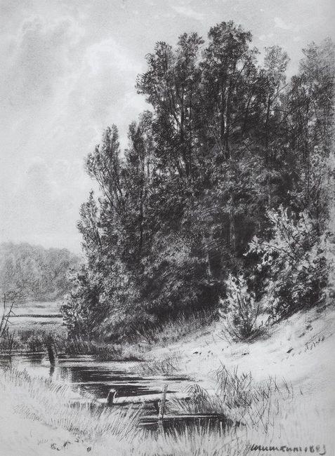 Stream 1883