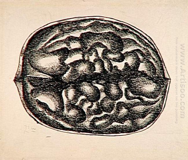 Study Nuts 1931