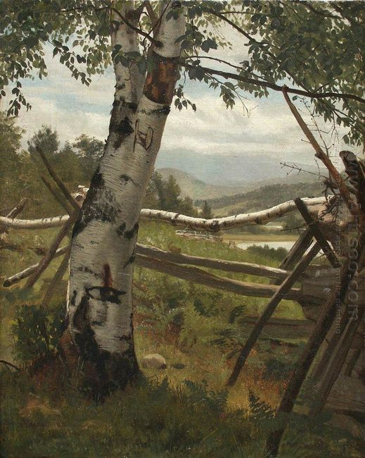 Summer Landscape With Birch