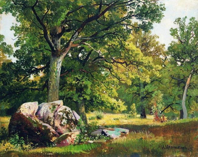 Sunny Day In The Woods Oaks 1891