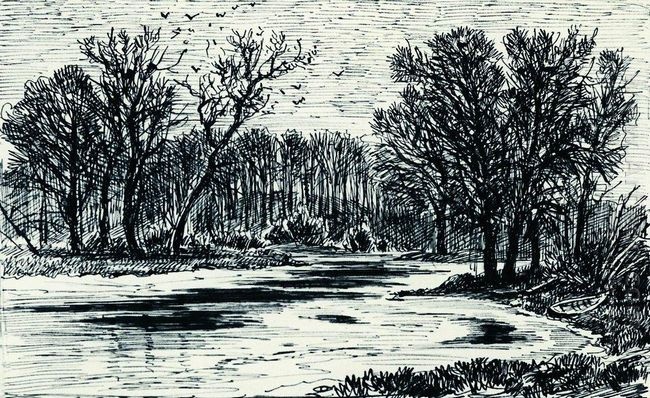 Swamp In The The Forest 1885