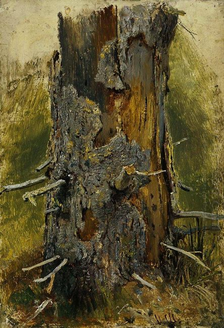 The Bark On The Dry Trunk 1890