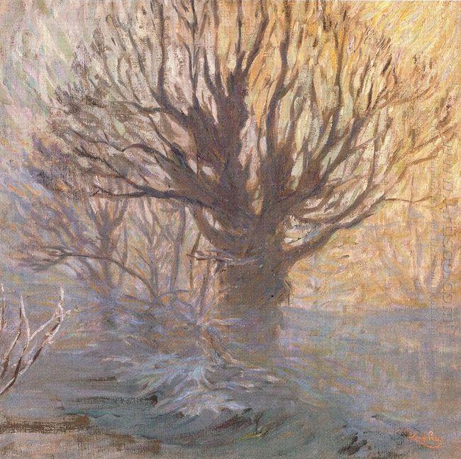 The Tree 1906