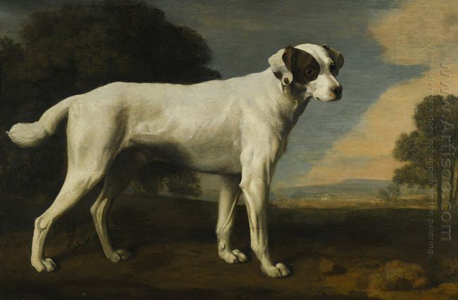 Viscount Gormanston S White Dog