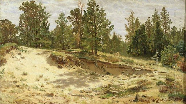Young Pines On The Sandy Cliff Mary Howie On Finnish Railways 18