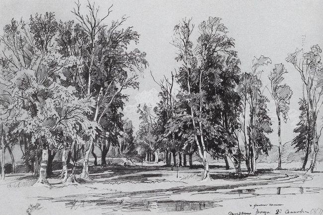 Zelenina Grove 1871