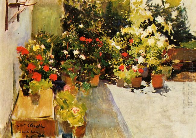 A Rooftop With Flowers 1906