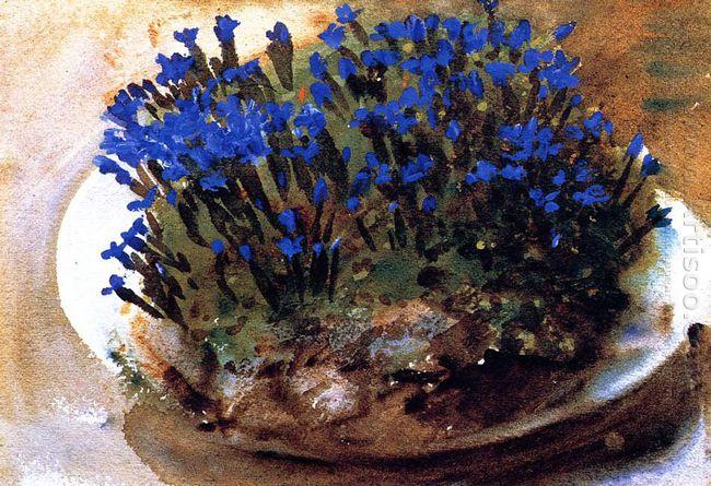 Blue Gentians 1905