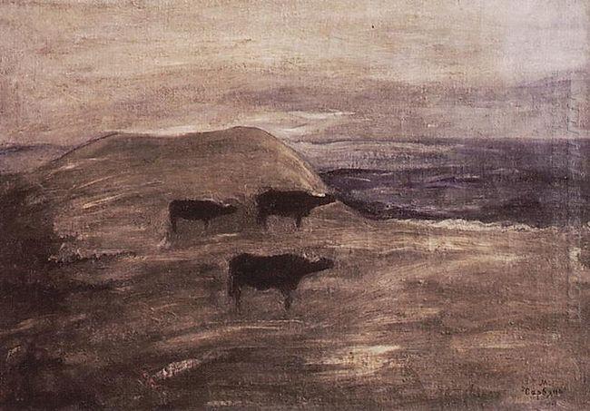 Bulls 1903