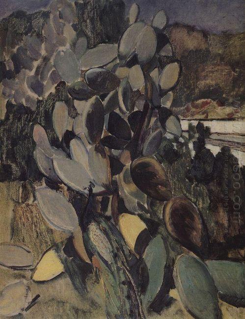 Cacti 1907
