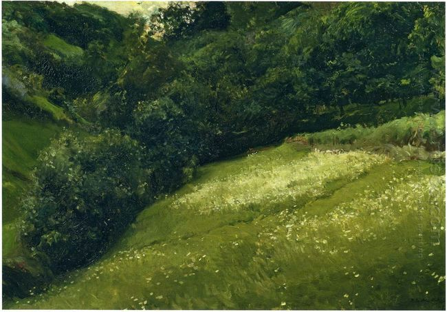 Field In Asturias 1903